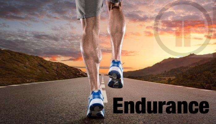 TTown Endurance